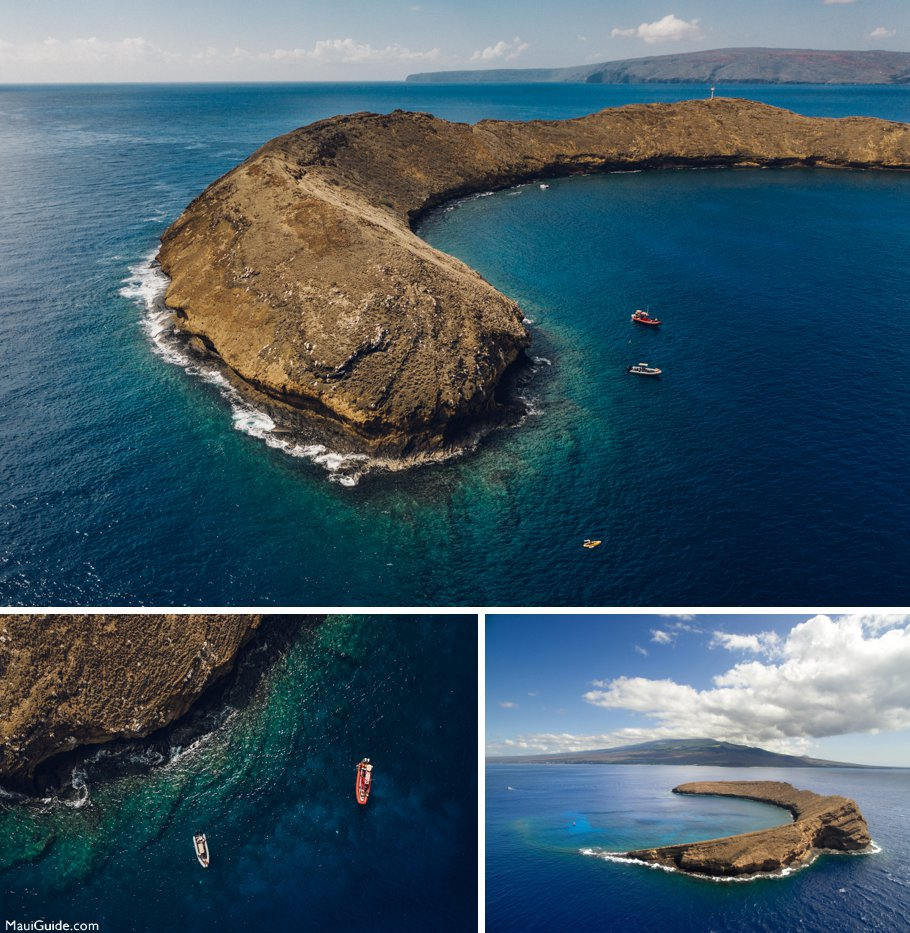 snorkeling at Molokini